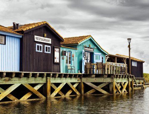 L'ile d'Oléron : un paradis pour tous les amoureux de la nature