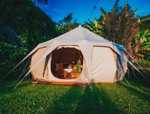 Quel est le meilleur camping en Méditerranée à Argeles sur Mer?